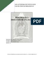 INTRODUCCION (Reparado).docx