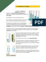 lacapilaridaddeloslquidos-110307195125-phpapp01
