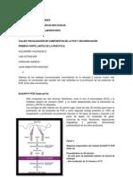 Purificación productos de PCR y Secuenciación