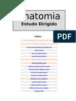 ___Estudo Dirigido___.doc