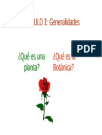 Cap. I - Generalidades