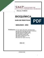 Bq 13 Chi Guia de Practicas