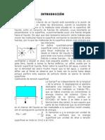 Adsorción (S).docx