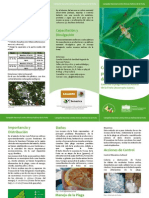 Triptico Moscas Nativas Fruta Z.H.pdf