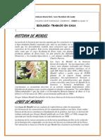 Historia de Mendel
