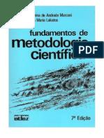 Metodologia - Artigo