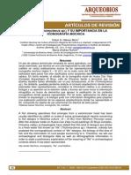 El Life Trichomycterus Sp y Su Importancia en La Iconografia Moche