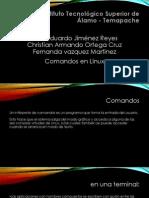 Comandos Basicos de Linux-programacion