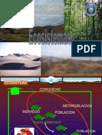 flujodeenergiadeunecosistema-121114203639-phpapp02