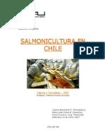Salmon i Cultura