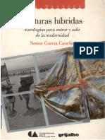 culturas_hibridas