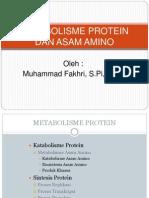 Metabolisme Protein 2012