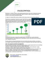 Brochure Paulownia Invest