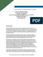 Enfermedad Inflamatoria Gastrointestinal Felina