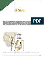 asam-urat.pdf