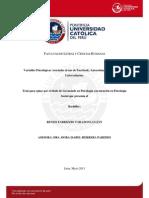Tarazona Lujan Renzo Variables (1)