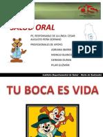 Presentacion Salu Oral 2012