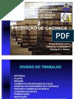 47286929-cachaca