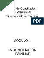 Curso de Conciliacion Familiar 2008
