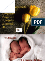 a_amizade.pps