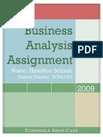 Business Analysis Assignmen1