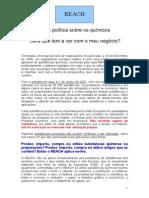 Guia_reach (1).pdf