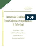 Album Grafico de Caracterizacion Taxonomica