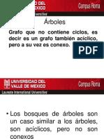 To Pico Sal Gort Clase 6