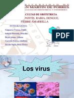 Losvirus[2]