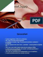 12. Vascularizatia SNC