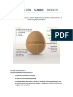 Información Huevos