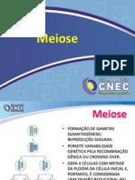 meiose1em