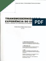 transmodernidade e experiência no espaço - Critina S. R. G. Cavaco