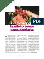 AGRONEGÓCIO BRASILEIRO E SUAS PARTICULARIDADES
