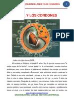 05 08 05 Homosexualidad El Sida y Los Condones