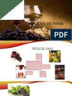 Cata de Vinos Original