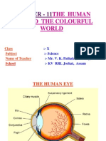 Light-human Eye and the Colourful World.ppt