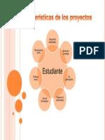 caracteristicas de los proyectos