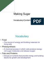 Making Sugar Vocabulary