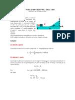 PAS - Física General (2003)