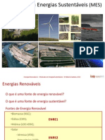 Enre1 - Mes - Biomassa 2013