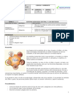 2013 LAB03 LOS SENTIDOS.doc