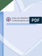 Guias Sca Fac 2011