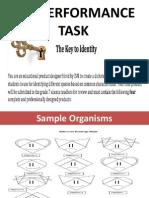 Performance Task- Identity.pptx