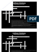 Crucigrama_CultivoCelular