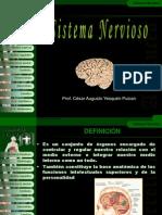 5°sistemanervioso-2012