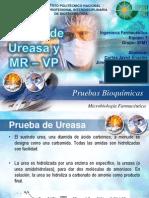 Equipo 7 Microbiología Prueba de MR - VP