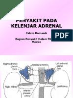 penyakit kel adrenal.ppt