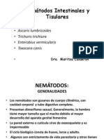 Nematodos I (aal Chicl)    USMP 2012 (2).ppt