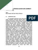 TEKNOLOGI PENGOLAHAN AIR GAMBUT SEDERHANA